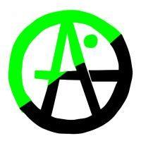 Anarchismo senza aggettivi